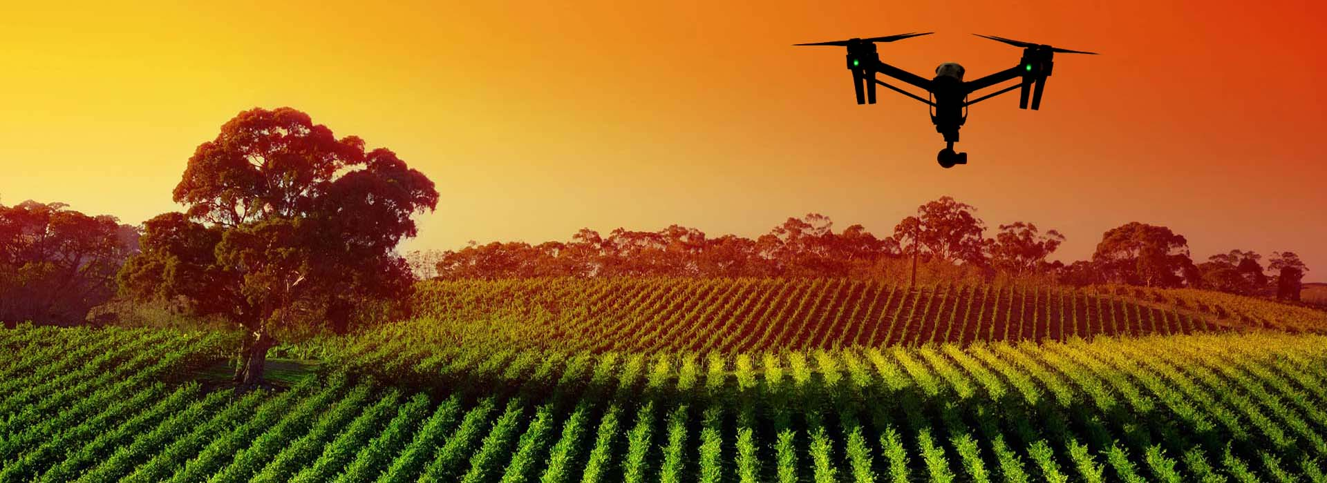 drone_agriculture_background