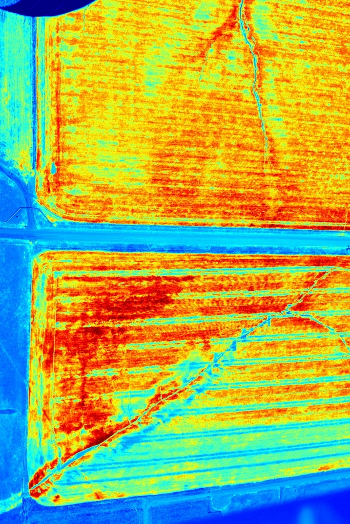 drone_thermal_crop